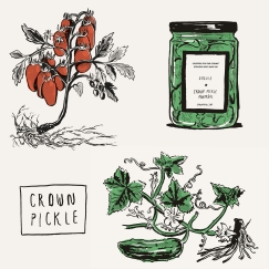 Illustrations for Crown Pickle Company